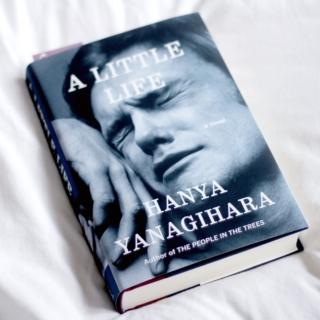 a-little-life-9547